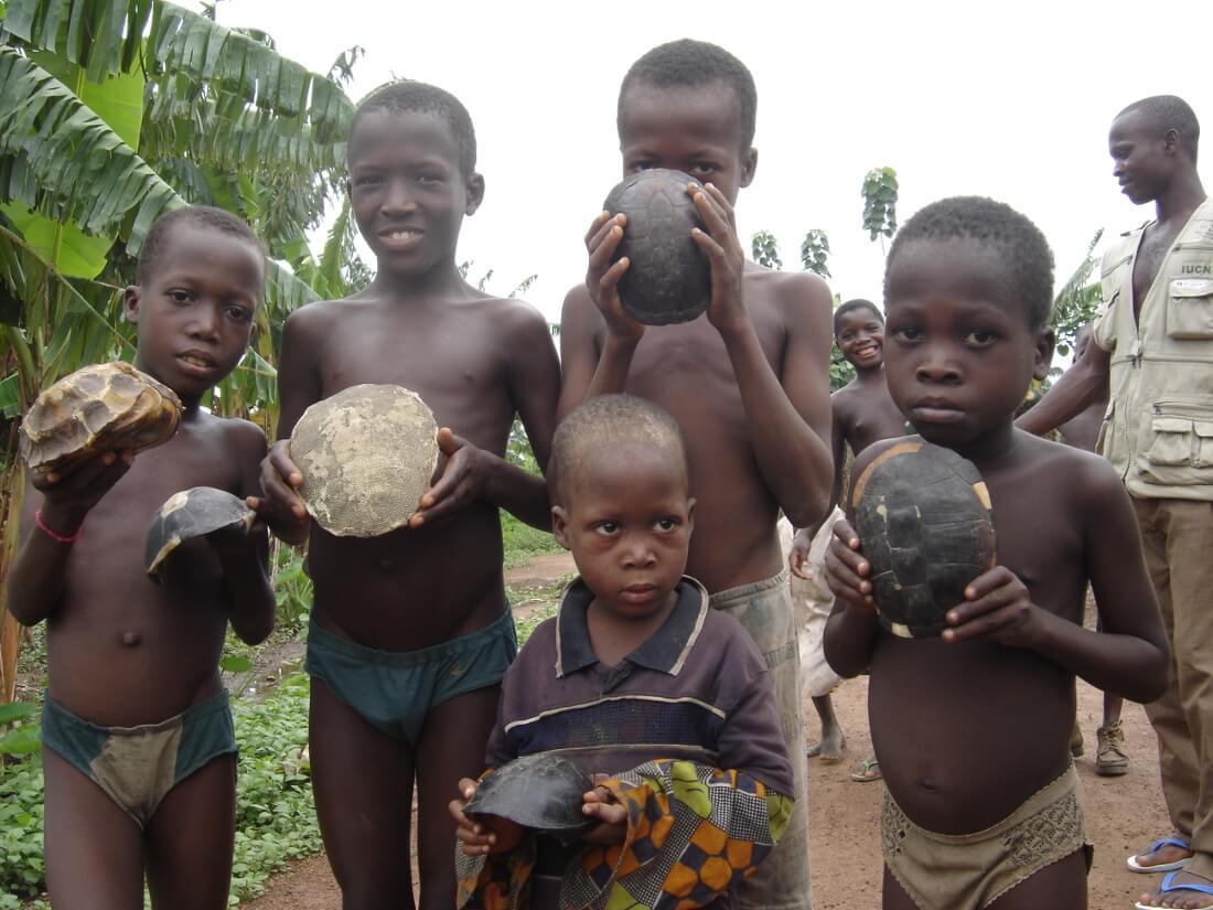 Kids hold remains of tortoise and turtle shells near Lokoli Forest, Benin